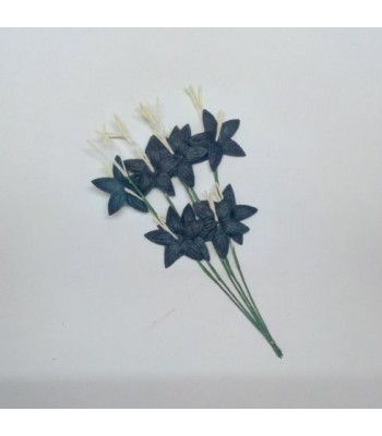 Star flower-BLACK