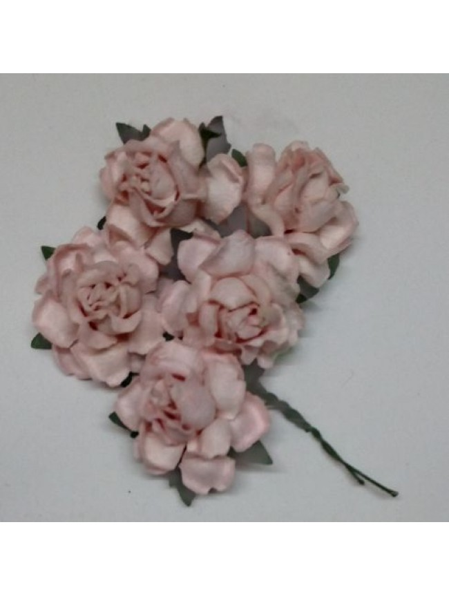 Mulberry Swan Roses-BLUSH PINK
