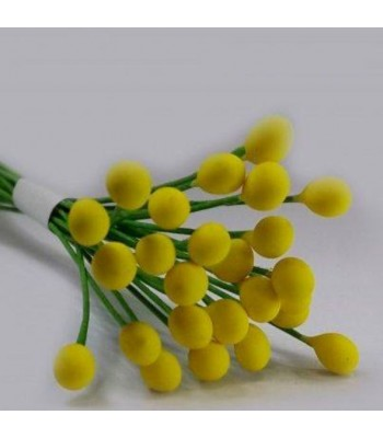 Wire Pollens Long-YELLOW